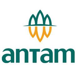 Logo ANTAM