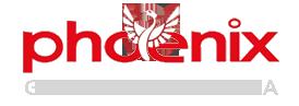 Phoenix Geosystem Indonesia